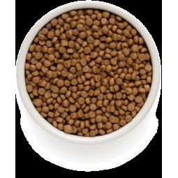Bolfo (Больфо) Противопаразитарный спрей для собак и кошек