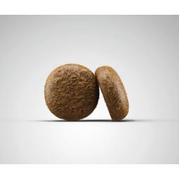 MASTERY CAT ADULT PREFERENCE WITH DUCK КОРМ ДЛЯ ВЗРОСЛЫХ КОШЕК С УТКОЙ