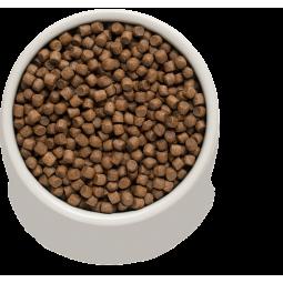 Барс Форте капли инсектоакарицидные для котят