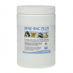 Pet Ag Bene Bac Plus