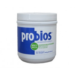 Vets Plus Probios Dispersible Powder